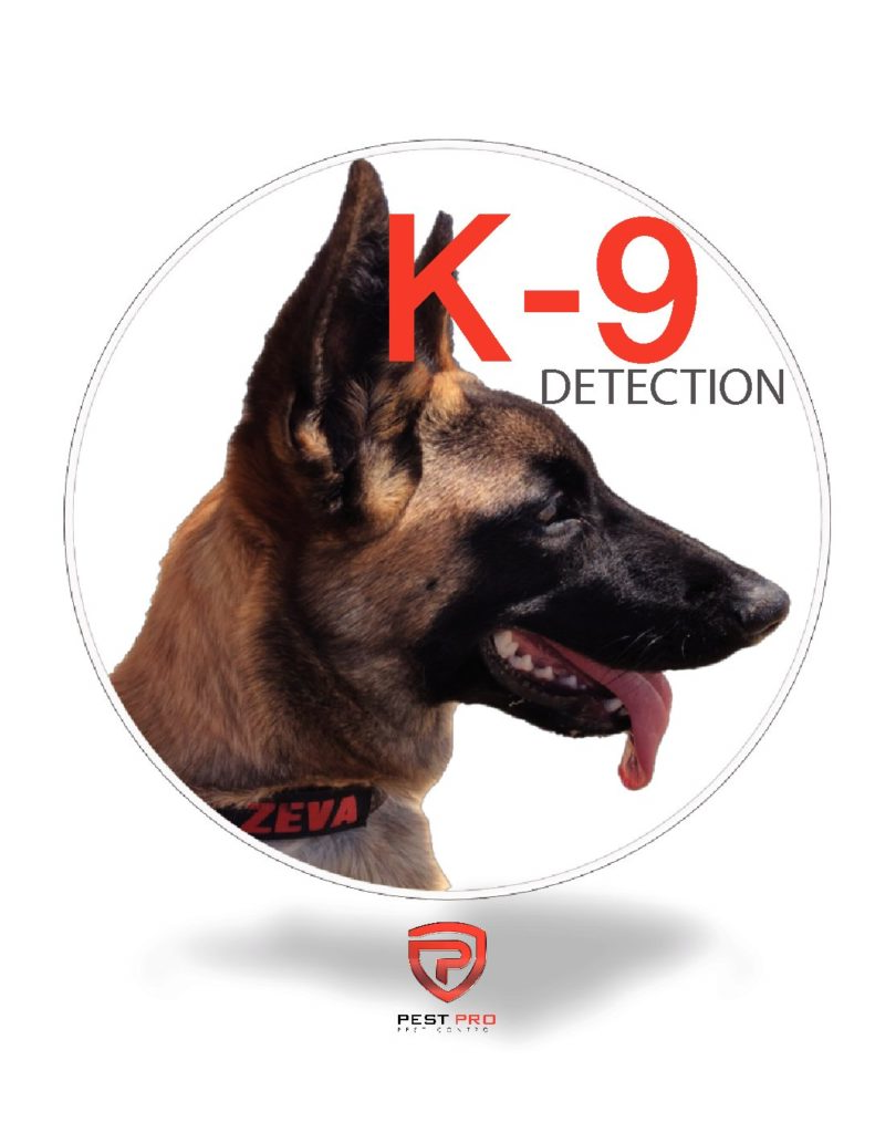 Bed Bug K-9 Inspections